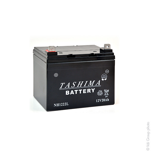 batterie tracteur et tondeuse autoport e 1001 piles batteries. Black Bedroom Furniture Sets. Home Design Ideas